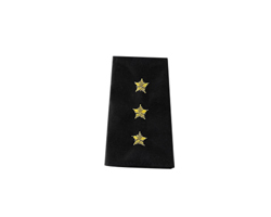 Commodore - Epaulets Rank in Bullion