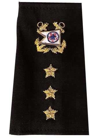 Custom Officer Epaulets