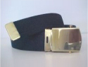 Regular Black Web Belt & brass buckle
