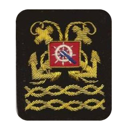 Sleeve Emblem, District Vice President