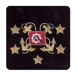 Sleeve Emblem, International Vice President