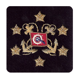 Sleeve Emblem, International President Navy or White